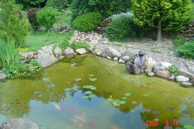 Galeria - Oczko wodne